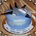 76 Tort z samolotem dla pilota F16