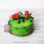 Tort papużki nierozłączki