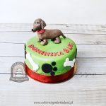 Tort w jamnikiem