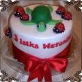 104 Tort z żółwiem i biedronkami na 3 urodziny Weroniki