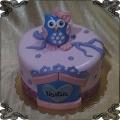 227 Tort sowa mała niebieska  z różową kokardą domek