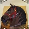 152 Tort głowa konia przestrzenny koń