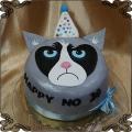 212 Tort wkurzony kot , zły kot , NO HAPPY CAT