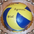 78 Tort piłka do piłki ręcznej na osiemnaste urodziny