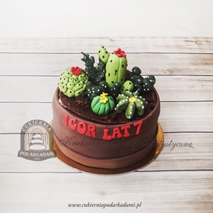 Tort z kaktusami