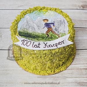 Tort z namalowanym ręcznie obrazkiem, obsypany zielonymi wiórkami czekoladowymi _blog